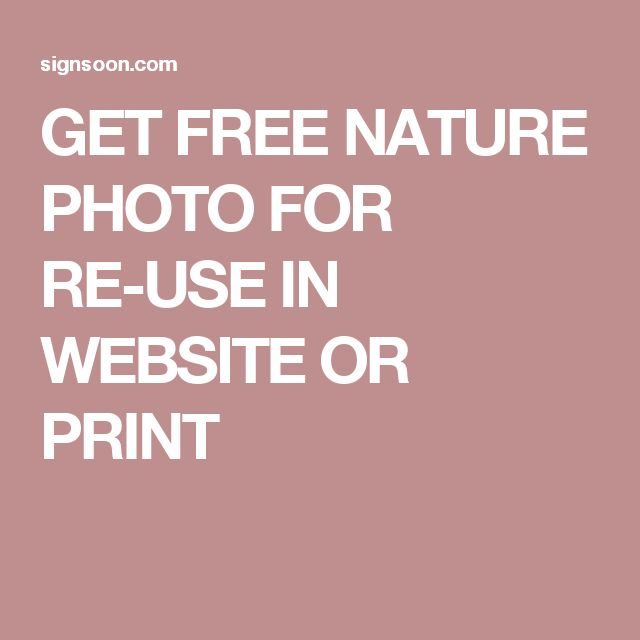 GET FREE NATURE PHOTO FOR RE-USE IN WEBSITE OR PRINT