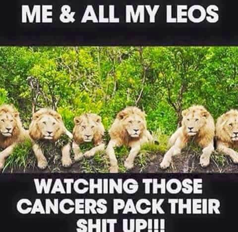 #LEO season Is here!