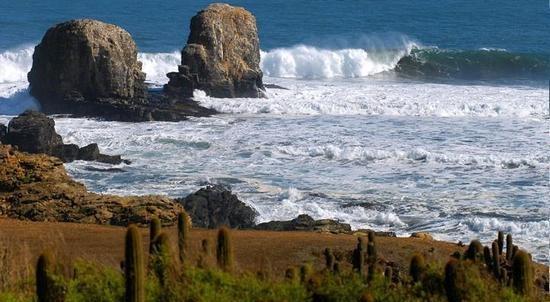 Punta de Lobos, Chile.