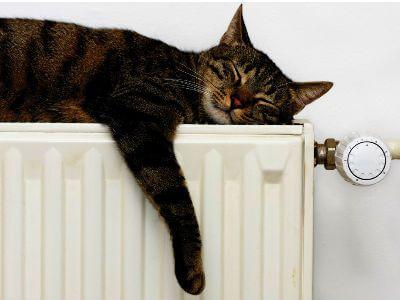 Solo affitti Valvole termostatiche installazione in arrivo nei condomini. Ma quanto si risparmierà?  Importante novità di questo autunno allinsegna dellefficienza energetica. Prima dellaccensione delle caldaie sarà necessario adeguare alla normativa che impone lobbligo di installare le valvole termostatiche e i contabilizzatori di calore in ogni condominio a riscaldamento centralizzato. Obiettivo: una minore spesa per il riscaldamento per gli inquilini virtuosi e un complessivo risparmio…