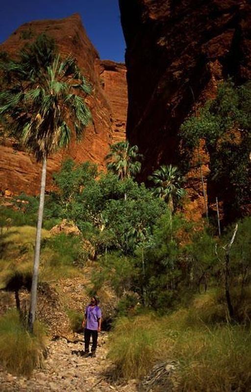 Purnululu National Park Western Australia