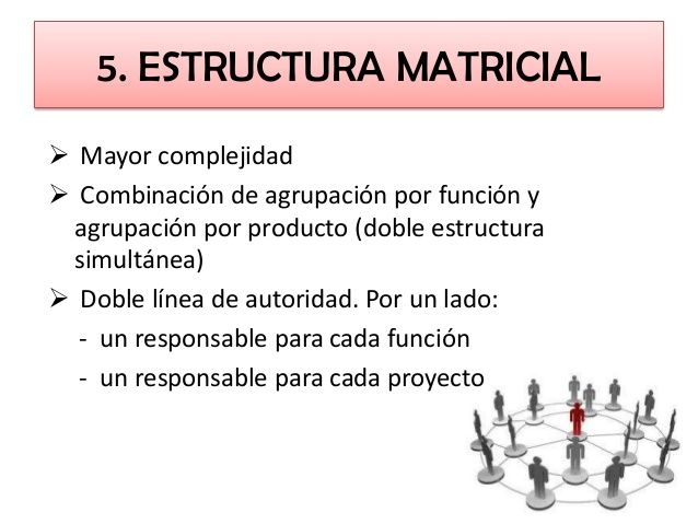 5). Estructura Matricial.