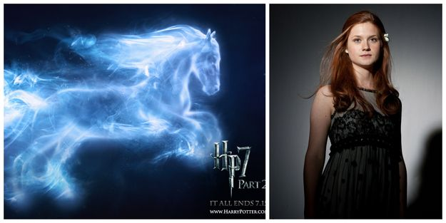What's Your Patronus?  You got: A Horse  You're loyal, smart, and willing to take risks for the sake of your friends and family. Your Patronus takes the form of a Horse, the same as Ginny Weasley. You're an underrated badass and enemies should be cautious of your hexing skills.