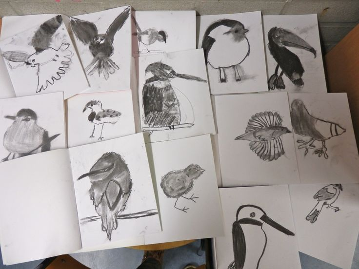 vogels met houtskool, groep 6