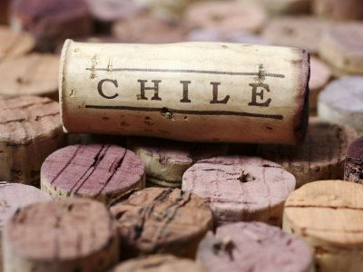 Chilean wines have gotten so much better.  You can find so many hidden treasures at affordable prices too.  Si vas para Chile!