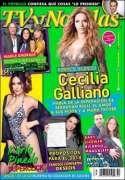 DescargarTV y Novelas Mexico - 30 Diciembre 2013 - PDF - IPAD - ESPAÑOL - HQ