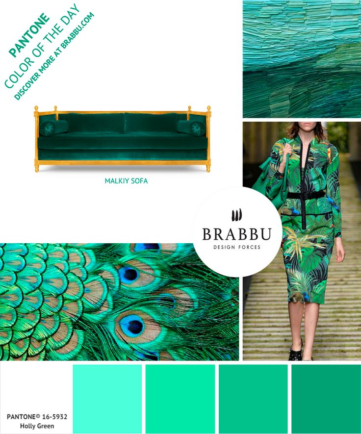 @pantonecolor Color of the Day: Holly Green | Mood Boards. Color Trends. #colors #pantone #moodboard #interiordesign Discover more at: https://www.brabbu.com/moodboards/