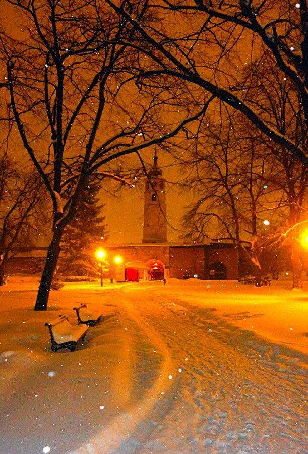 Belgrade, Serbia. Night. Winter. Snow. Park. Kalemegdan fortress. Beograd, Srbija. Noc. Zima. Sneg.