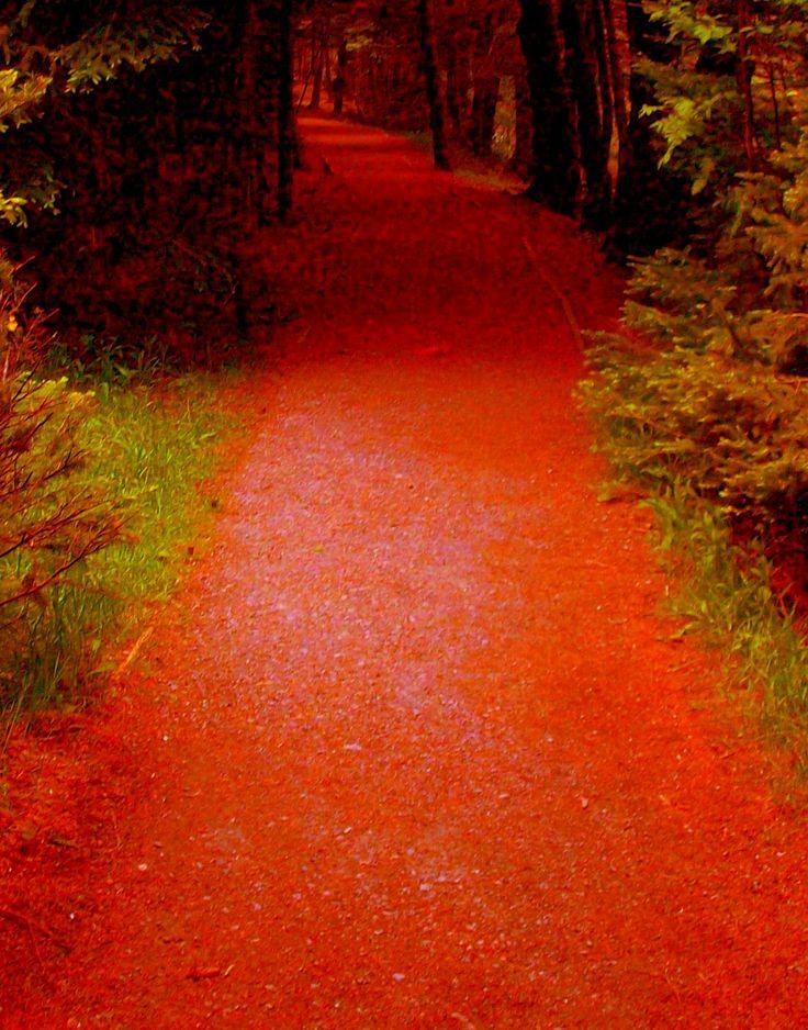 Bowring Park, St. John's, Newfoundland