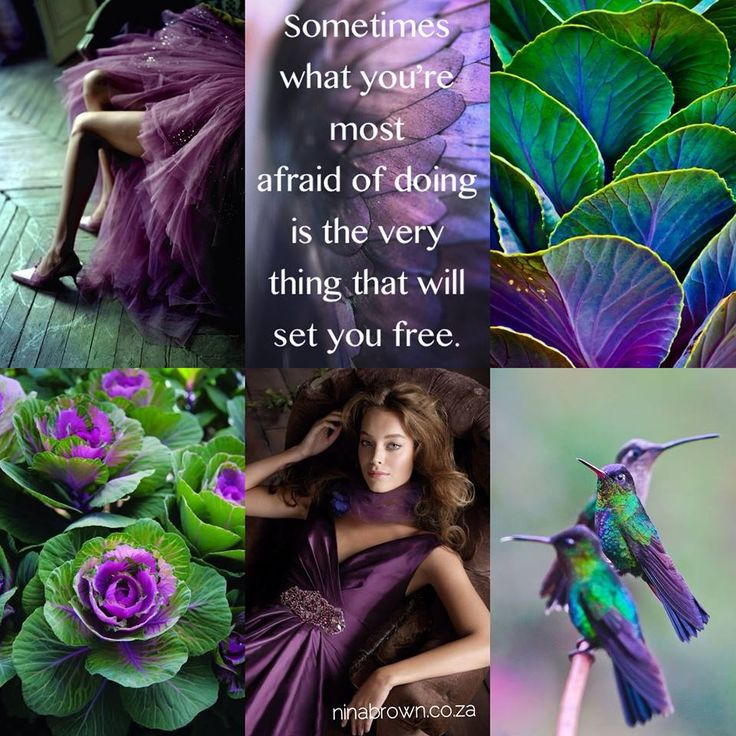 Sometimes what you're most afraid of doing is the very thing that will set you FREE! #freedom #brave www.facebook.com/...