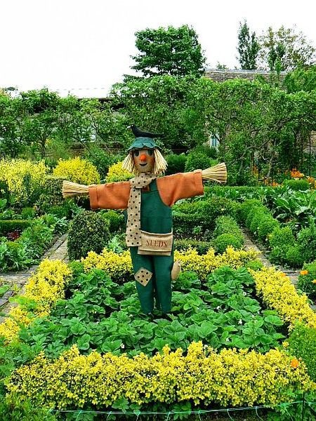 160 best images about scarecrows and pumpkin people on for Domestic garden ideas
