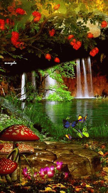 catarata mariposas gif