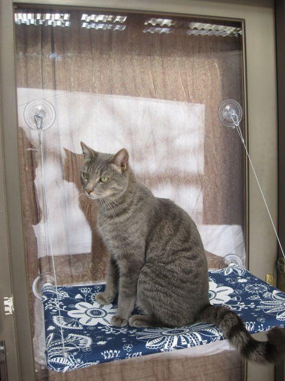 Neugierige Katzen Fenster Barsch von JennGv auf Etsy, $39.95