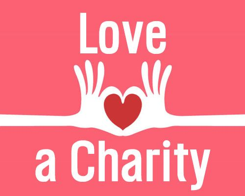The 25+ best Charity evaluation ideas on Pinterest Charitable - charity evaluation
