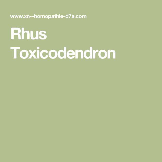 Rhus Toxicodendron