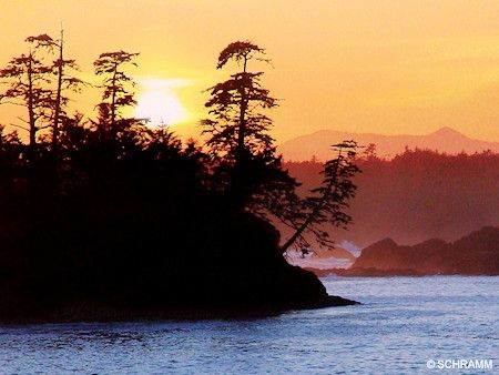 Sunset on the Wild Pacific Trail Ucluelet, BC