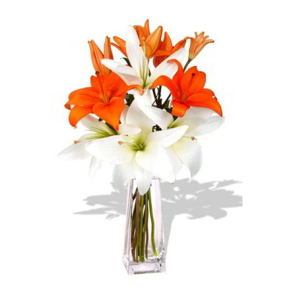 Nice Bouquet of 3 Orange and 3 white Lilies( Vase not included)