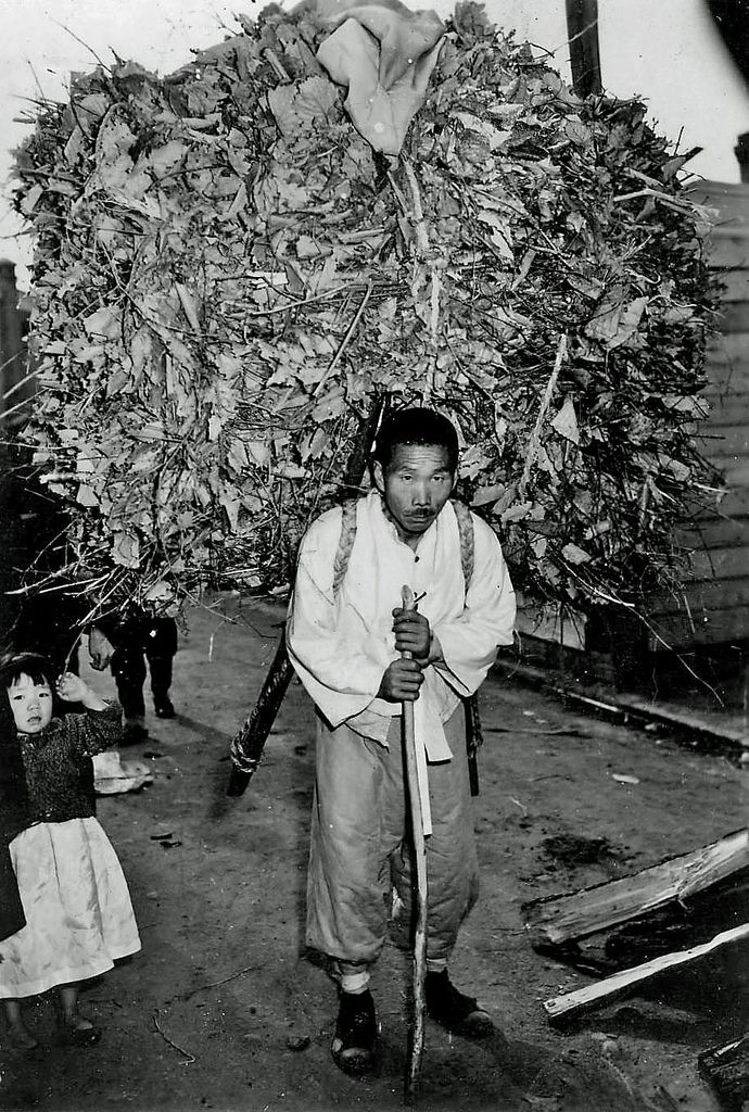 Firewood Carrier | Winter 1945, men and boys carry firewood into Seoul from the country. Don O'Brien.
