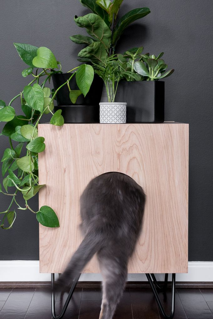 How To Build A Stunning Cat House Side Table For Your Kitties Cat House Diy Cat Houses Indoor Modern Cat Furniture