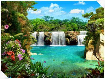 exotic lagon & flowers