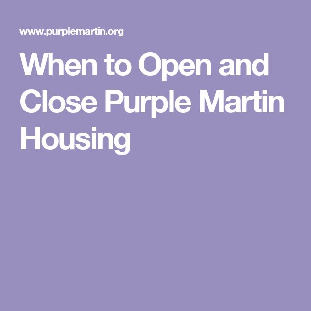 When to Open and Close Purple Martin Housing