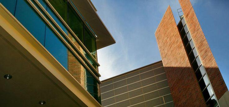 Graduate & Professional Education #ucla, #university #of #california #los #angeles, #bruins, #equity, #diversity, #inclusion, #arts, #art, #college, #institution, #architecture, #engineering, #hyperloop, #romela, #brain, #philanthropy, #stem, #anderson, #law, #magazine, #alumni, #community, #optimist, #optimists, #optimism…