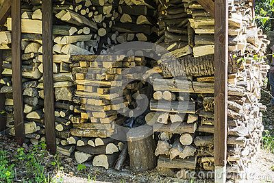 Firewood is stacked to burn during the cold day and winter. Forest in Roznow . Poland