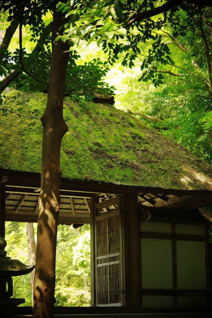 Honen-in (法然院),Kyoto