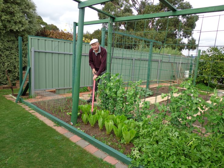 Gardening at McLaren Vale Lodge