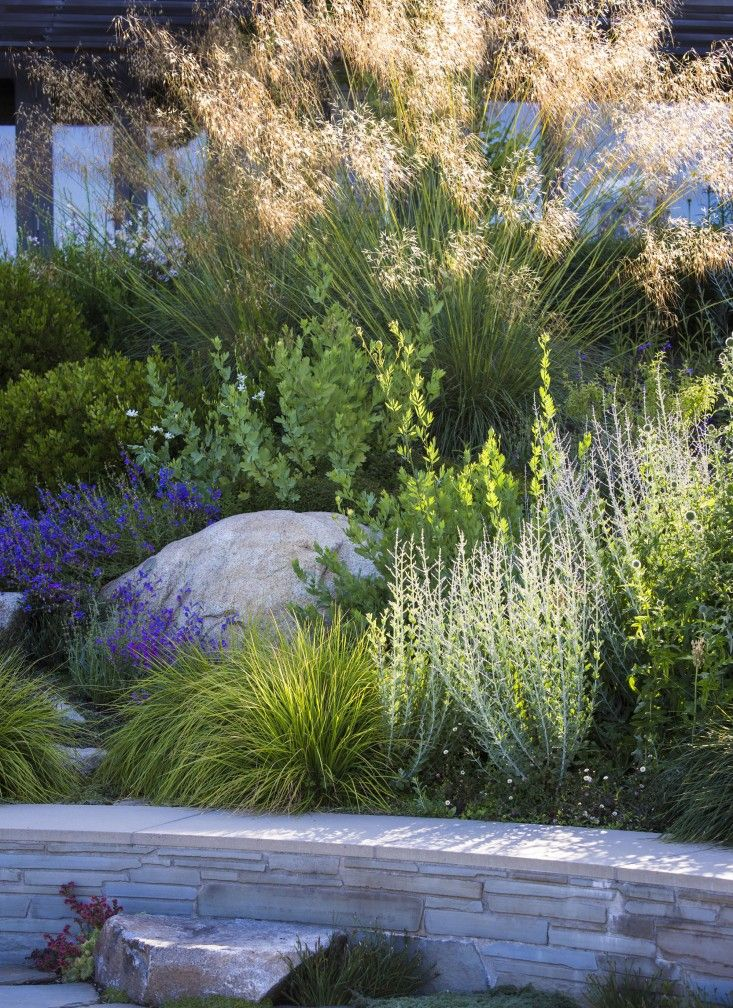 Behind a retaining wall is a palette of flowering perennials and grasses, including Stipa gigantea in the background