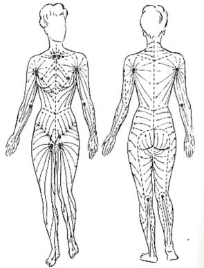 Lymph Flow - Dry Body Brushing Benefits - 1) Stimulates blood and lymph flow. 2) Removes dead skin cells. 3) Stimulates the hormone and oil glands. 4) Reduces cellulite. 5) Strengthens the immune system. 6) Stimulates the nervous system, tones the muscles, tightens the skin. 7) Nurtures your body.