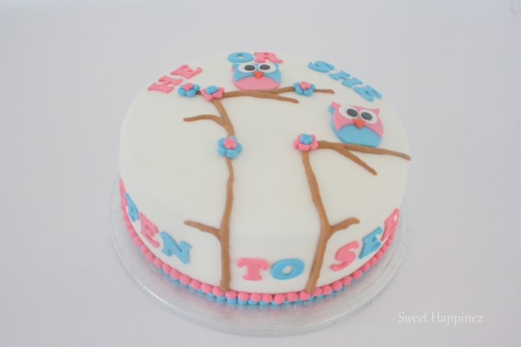Gender Reveal Cake with Owls