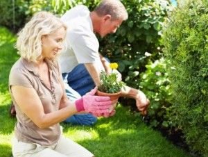 Ο γάμος  είναι ένα περιβόλι με δυο ανασκουμπωμένους κηπουρούς χωρίς ωράριο και με διαρκή ενασχόληση.