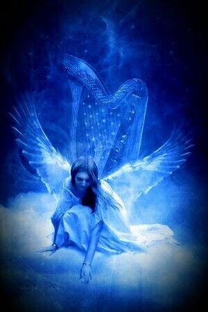 Shocking Blue Angel