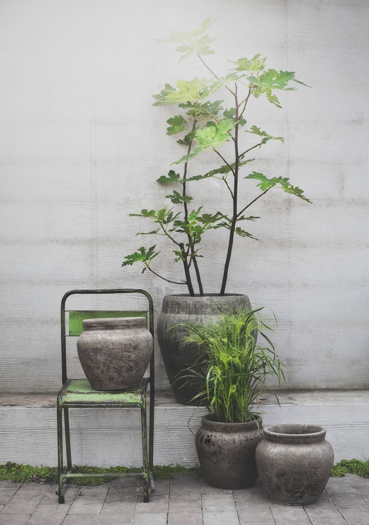 Outdoor green styling