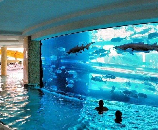 1000 ideas about beach pool on pinterest pool shower - San alfonso del mar resort swimming pool ...
