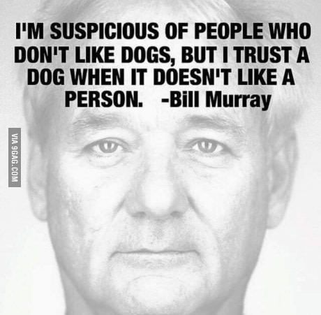 """""""I'm suspicious of people who don't like dogs, but I trust a dog when it doesn't like a person."""" - Bill Murray"""