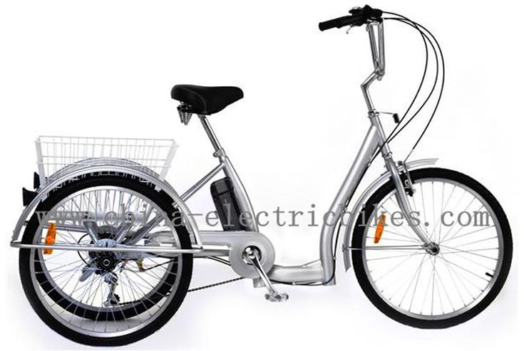 2014 new model,48V/17Ah LiFePo4 battery,motor:1000W-Electric Tricycle