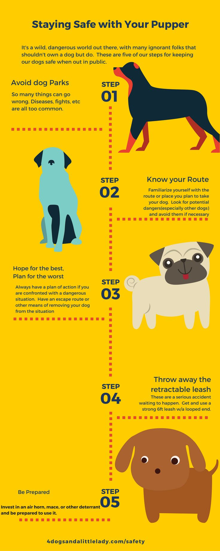 5 steps for keeping your dog safe in public