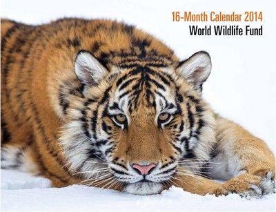 #Free #Calendar - World Wildlife Fund 2014