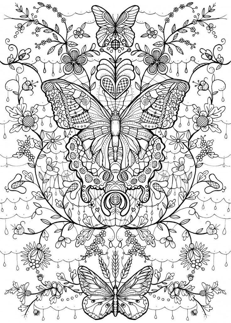 Butterfly Coloring Page Kolorowanka Motyle