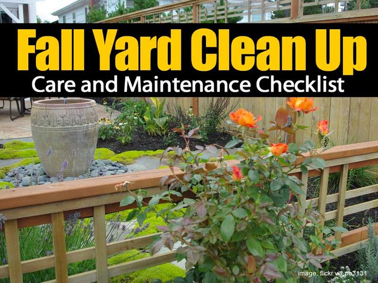 Fall Yard Clean Up Care and Maintenance Checklist