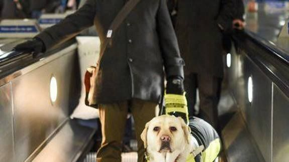 A blind man attached a GoPro to his guide dog - the results are horrifying Read more Technology News Here --> http://digitaltechnologynews.com  A blind man has strapped a GoPro camera to his guide dog to record the daily discrimination he faces during his London commute.   Amit Patel a 37-year-old former A&E doctor lost his sight in 2012 and relies on his guide dog Kika to navigate his way around the capital during rush hour.   Image:  amit patel  The decision to fit his guide dog with a…