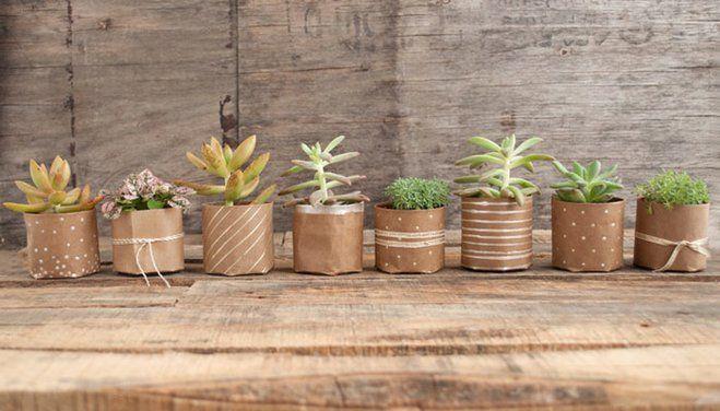 DIY Succulent Planter | Wayfair