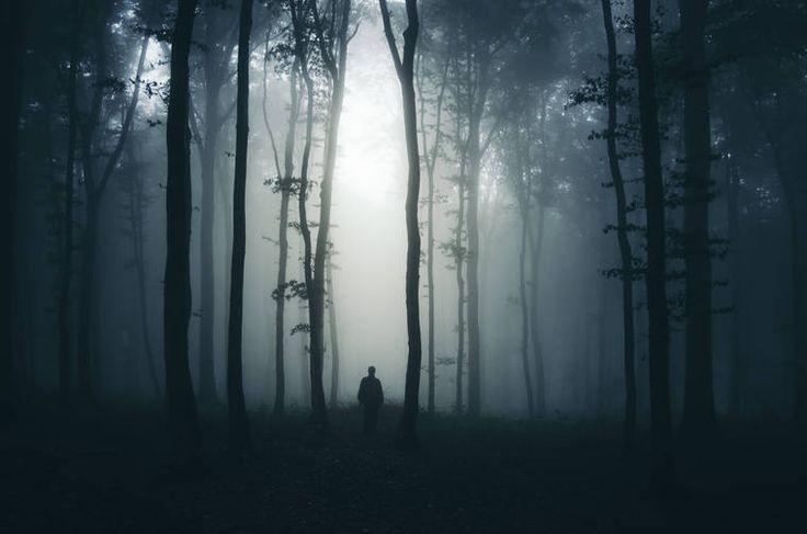 Мир зомби и призраков от Fotolia! - ПоЗиТиФфЧиК - сайт позитивного настроения!
