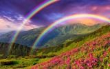 Free online jigsaw puzzle game