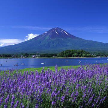 © Public Relations Division, Yamanashi Prefecture / Omori Daiichi