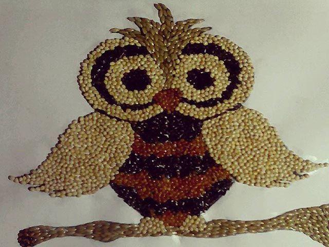 Gambar Kolase Hewan Burung Hantu Kolase Gambar Hewan Ilustrasi