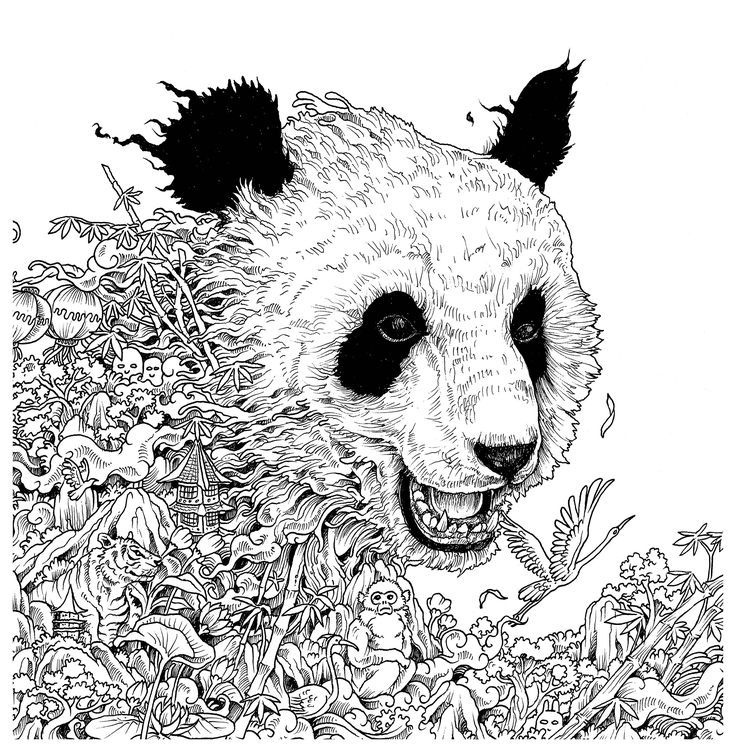 29 best coloring book kerby rosanes images on pinterest for Imagimorphia coloring pages