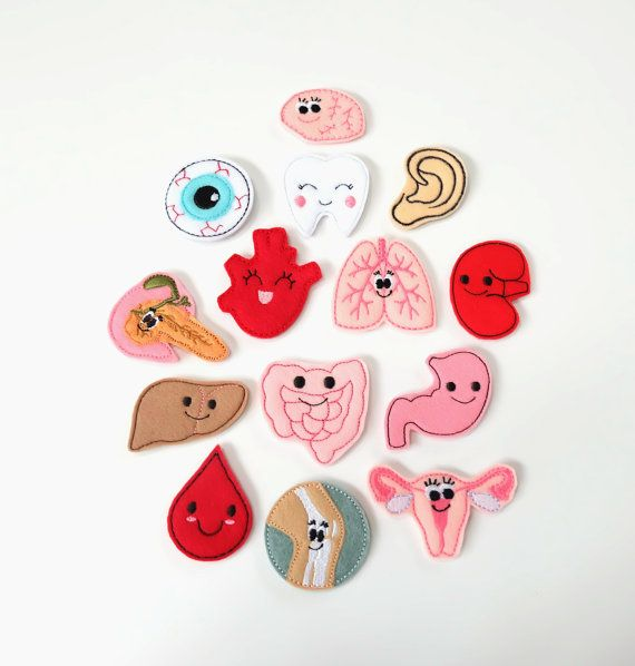 Interchangeable Organs Bundle Nurse Badge Reel
